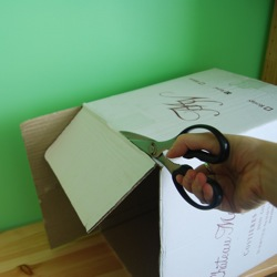 cut toss box