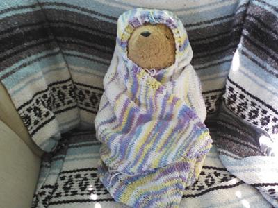 Paddington Bear wrapped and cozy